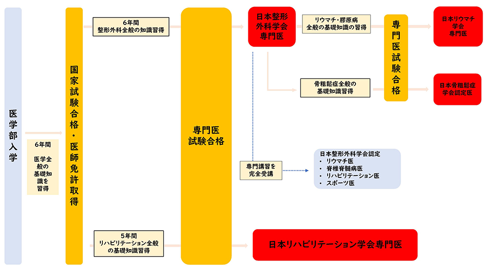 【画像】専門医制度のメリット